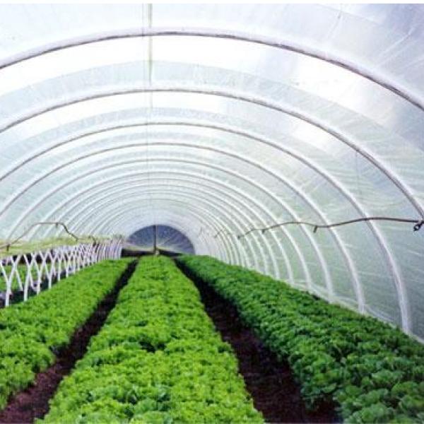 Agricultural film